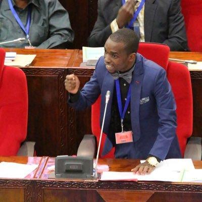 Kumiliki shule ya private ni sawa na kupita na mihadarati kituo cha Polisi – Mbunge Mlinga
