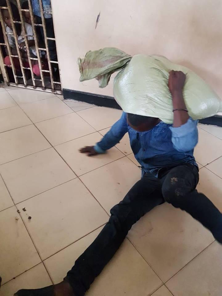 Mwizi ajisalimisha polisi baada ya mzigo wa mahindi aliouiba kuganda mgongoni (Picha)