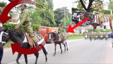 Photo of Video: Uwezo wa askari wenye farasi wanogesha 'Jiongeze Tukuongezee', DStv wafanya kitu 'Bab'kubwa