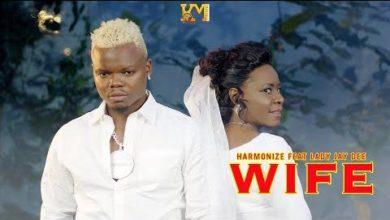 Photo of Harmonize aachia video tatu kwa wakati mmoja, Moja akimshirikisha Lady Jaydee (+Video)