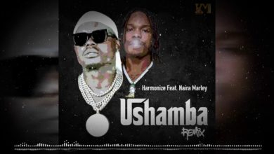 Photo of Harmonize aachia remix ya ushamba akimshirikisha Naira Marley kutoka Nigeria (+ Audio)
