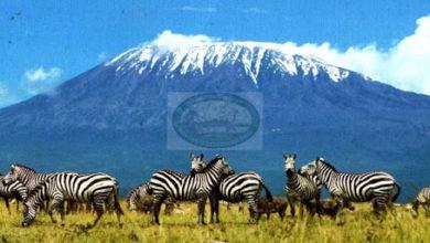 Photo of Hifadhi ya Mlima Kilimanjaro namba 12 duniani  (+ Video)